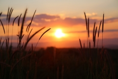 sunset-3416768_1920